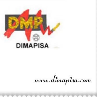 logo-dimapisa