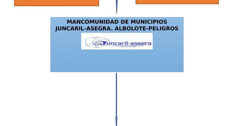 ¿Quién es quién en Juncaril? Los 4 nombres que debes conocer.